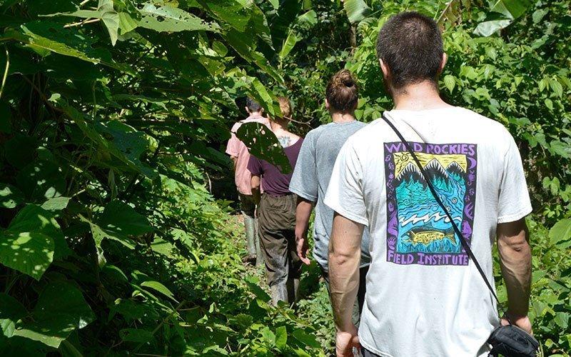 Volunteer in Amazon Conservation in Peru