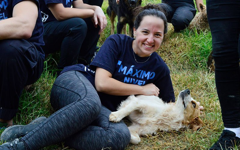 Volunteer in Dog Shelters in Peru