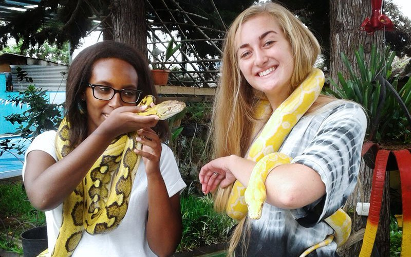 Volunteer with Exotic Animal Care in Guatemala