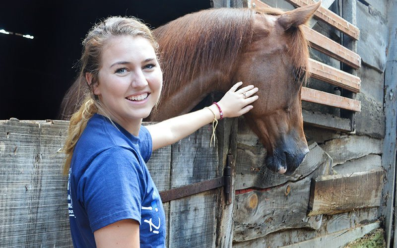 Volunteer in Horse Farms in Guatemala