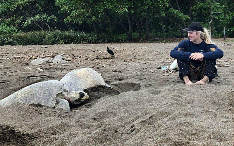 Sea Turtle Conservation in Guatemala